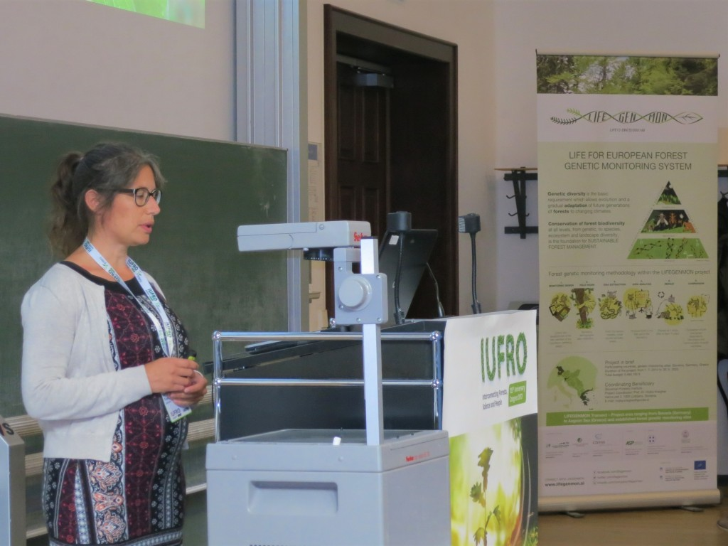 IUFRO2017_Session45 (9)